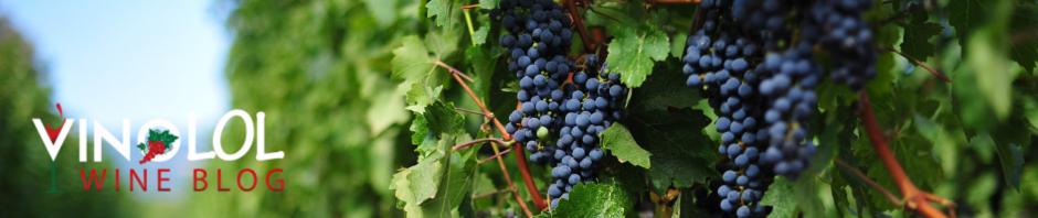 wine-hangover-meme | VinoLOL: Wine Blog